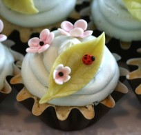 Confetti Cakes: Lady Bug Cupcakes